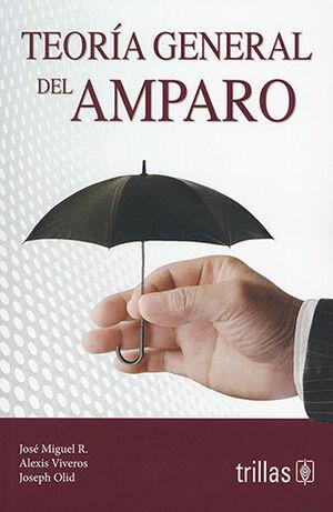 TEORÍA GENERAL DEL AMPARO
