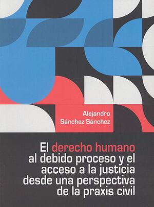 DERECHO HUMANO AL DEBIDO PROCESO Y EL ACCESO A LA JUSTICIA DESDE UNA PERSPECTIVA DE LA PRAXIS CIVIL, EL