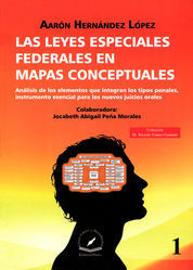 LAS LEYES ESPECIALES FEDERALES EN MAPAS CONCEPTUALES VOL. 1