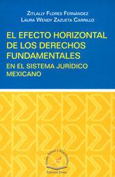 EFECTO HORIZONTAL DE LOS DERECHOS FUNDAMENTALES, EN EL SISTEMA JURIDICO MEXICANO, EL