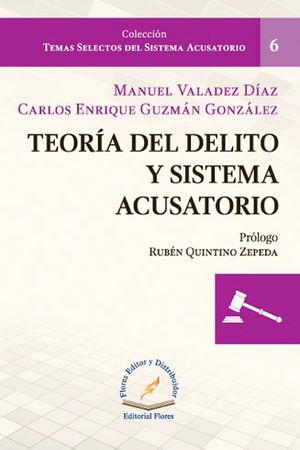 TEORÍA DEL DELITO Y SISTEMA ACUSATORIO # 6
