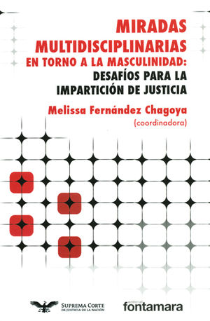 MIRADAS MULTIDISCIPLINARIAS EN TORNO A LA MASCULINIDAD: DESAFÍOS PARA LA IMPARTICIÓN DE JUSTICIA
