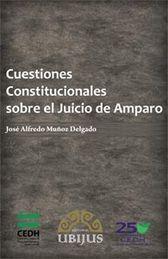 CUESTIONES CONSTITUCIONALES DEL JUICIO DE AMPARO