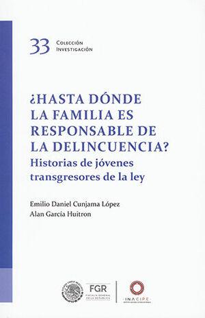 ¿HASTA DONDE LA FAMILIA ES RESPONSABLE DE LA DELINCUENCIA?