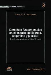 DERECHOS FUNDAMENTALES EN EL ESPACIO DE LIBERTAD, SEGURIDAD Y JUSTICIA