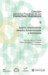 JUSTICIA CONSTITUCIONAL, DERECHOS FUNDAMENTALES Y DEMOCRACIA (NÚMERO 9)