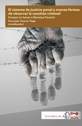 SISTEMA DE JUSTICIA PENAL Y NUEVAS FORMAS DE OBSERVAR LA CUESTION CRIMINAL