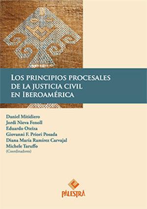 PRINCIPIOS PROCESALES DE LA JUSTICIA CIVIL EN IBEROAMERICA, LOS