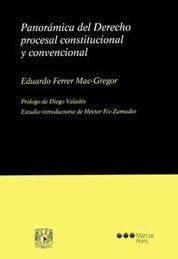 PANORAMICA DEL DERECHO PROCESAL CONSTITUCIONAL Y CONVENCIONAL