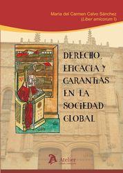 DERECHO, EFICACIA Y GARANTÍAS EN LA SOCIEDAD GLOBAL.