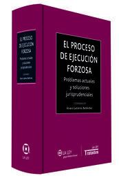 EL PROCESO DE EJECUCIÓN FORZOSA
