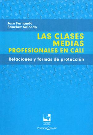 CLASES MEDIAS PROFESIONALES EN CALI, LAS