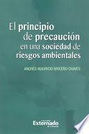 PRINCIPIO DE PRECAUCIÓN EN UNA SOCIEDAD DE RIESGOS AMBIENTALES, EL