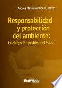RESPONSABILIDAD Y PROTECCIÓN DEL AMBIENTE: LA OBLIGACIÓN POSITIVA DEL ESTADO
