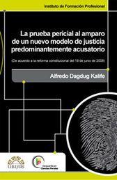 PRUEBA PERICIAL AL AMPARO DE UN NUEVO MODELO DE JUSTICIA PREDOMINANTEMENTE ACUSATORIO, LA