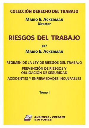 RIESGOS DEL TRABAJO - 2 TOMOS (PREVENCIÓN DE RIESGOS Y OBLIGACIÓN DE SEGURIDAD - ACCIDENTES Y ENFERMEDADES INCULPABLES)
